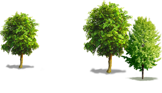 Palmetto Inflatables, LLC - Florence SC - Party Event Rentals - Bounce Houses - Wet Slides - Dry Slides - Slie and Slides - Table and Chairs - Concessions